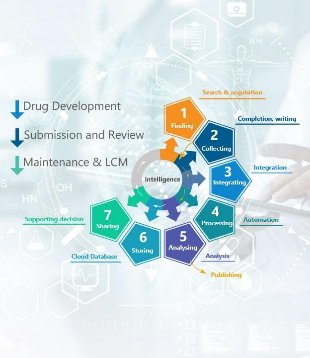 PLG Innovation Roadmap